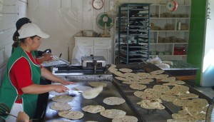 Workers at the Santa Rosalia tortillaria press, cook, and cool the delicious flat breads!